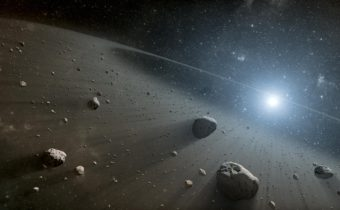 Asteroids in the Solar System Have One Origin