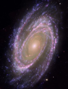 Hubble-GALEX-Spitzer Composite Image of M81