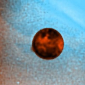 Plume of Gas and Dust Spouts From Volcanic Eruption on Io